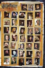 New Character Montage Harry Potter Poster