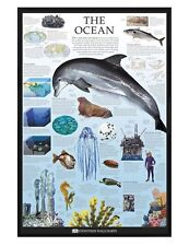 Dorling Kindersley Gloss Black Framed The Ocean Maxi Poster 61x91.5cm