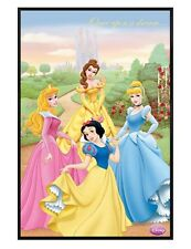 Disney Princesses Gloss Black Framed Once Upon a Dream Maxi Poster 61x91.5cm