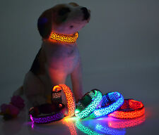 Pet Dog LED Night Safety Pet Flashing Light Adjustable Cat Nylon Leash Collar