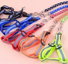 Reflective Rope Dog Pet Puppy Safety Noctilucent Harness Leash Strap Your PICK