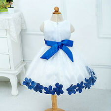 Girls Princess Petals Tulle Formal Wedding Pageant Knee Length Dress Exquisite