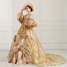 Fancy Victorian Medieval Renaissance Costume Dress Antoinette Theater Ball Gown