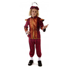 RICH TUDOR BOY SCHOOL CURRICULUM FANCY DRESS COSTUME MEDIEVAL RENAISSANCE S M L