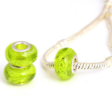 5pcs Silver Plated Lampwork Enamel Charm Beads Loose Large Big  Jewelry
