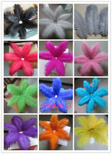 beautiful ostrich feathers 8-10 inch / 20-25 cm wide variety of colors available