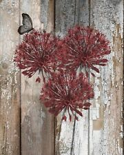 Rustic Floral Home Decor, Red Brown Farmhouse Wall Art Matted Picture