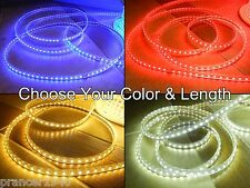 BLUE or COOL WHITE SMD5050 High Intensity LED Rope Lights