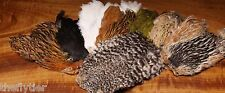 India Hen Neck - Fly Tying Cape Hackle great for soft hackles