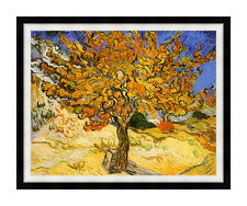 Framed Art Mulberry Tree by Vincent van Gogh Print Painting Repro Canvas Picture