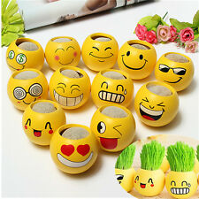 DIY Expression Magic Grass Plant Pot Grass Head Doll Toy Haircut for kids Child