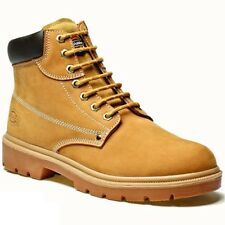 REDUCED DICKIES DONEGAL SAFETY STEEL TOE CAP & MS WORK BOOTS HONEY SIZE UK 6-12