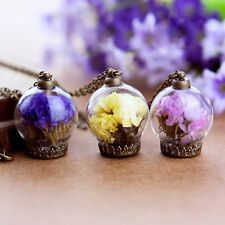 Beauty Dried Myosotis Flower Inside Glass Pendant Necklace Long Sweater Chain