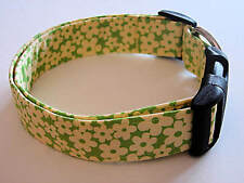 Charming Lime Green w/ Bright Yellow Daisy Flowers Dog Collar