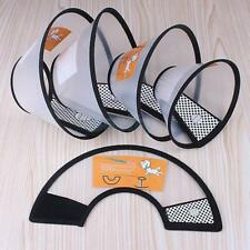 Dog Elizabethan Wound Medical Healing Cone Protection Bite Prevention Pet Collar