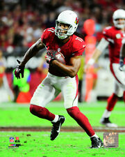 Larry Fitzgerald Arizona Cardinals 2014 NFL Action Photo RM036 (Select Size)