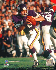 Fran Tarkenton Minnesota Vikings Licensed Fine Art Prints (Select Photo & Size)