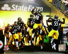 Pittsburgh Steelers Heinz Field 2014 Team Introduction Photo RP051 (Select Size)