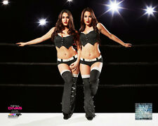Bella Twins WWE Licensed Fine Art Wrestling Prints (Select Photo & Size)
