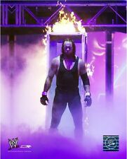 The Undertaker WWE Action Photo GU076 (Select Size)