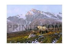 Michael Coleman Alaskan Dawn - Grizzly Family Artist's Proof Canvas Giclee