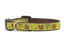 Dog Puppy Design Collar - Up Country - MADE IN USA - Nuts & Squirrels - TeaCup