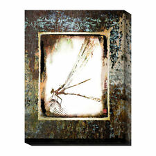 Global Gallery Dragon Fly Delight by Suzanne Silk Graphic Art Print on Canvas