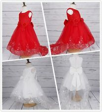 Kid Girls Embroidery Flower Dress Pageant Party Prom Princess Bridesmaid Wedding