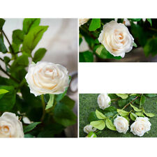 DIY Wedding Craft Flowers Bridal Bouquet 5 Rose Bud/Flower 3 Colors