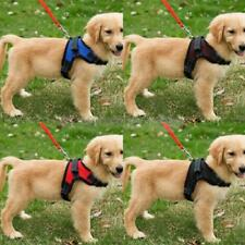 Breathable Mesh Dog Harness Pet P Comfy Padded Vest Strap No Pull Leash Collar
