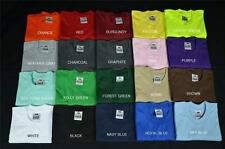 2 NEW PROCLUB S-5XL HEAVY WEIGHT T-SHIRTS PLAIN TEE PRO CLUB COLOR BLANK 2PC