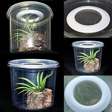 Praying Mantis/Stick insect/Spider/Rearing Pot,Insect Rearing Pot