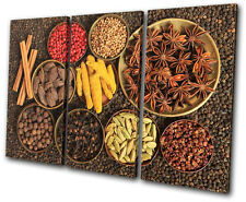 Food Kitchen Indian Spices TREBLE CANVAS WALL ART Picture Print VA