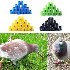 100Pcs Poultry Leg Bands Bird Pigeon Parrot Chicks Rings 10.5mm 1-100 Numbered