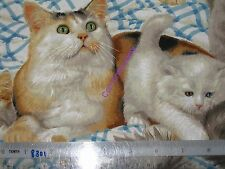 *Choose design & size - cat Cats animals cotton quilting fabric