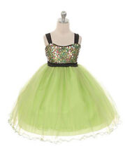 New Flower Girls Lime Green Fuchsia Purple Teal Dress Wedding Pageant Party C332