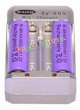 2x AA 2A Purple Color 1.2V Ni-MH 3000mAh Rechargeable Battery + Charger