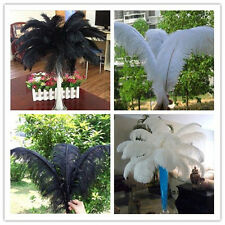 Wholesale!Beautiful 10/50/100PCS Ostrich Feathers 6-22inches/15-55cm wedding