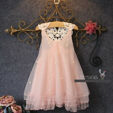 New Baby Girls Pageant Pearl Dress Pink Princess Embroidered Children Kids Dress