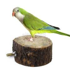 Dia. 6/8/10cm Round Wooden Parrot Bird Cage Perch Stand Fun Play Hanging Place