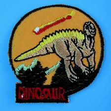 Dinosaur Dragon Cartoon Embroidered Iron on Patch Badge Applique Cute Baby Kids