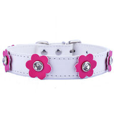 Rhinestone Diamante Collar Flowers Charm Leather Studded Dog Collar Small White