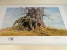 David Shepherd Boabab and Friends elephant signed limited edition print