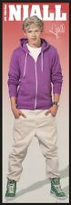"""ONE DIRECTION - FRAMED DOOR MUSIC POSTER (NIALL HORAN HOODIE) (SIZE: 21 X 62"""")"""