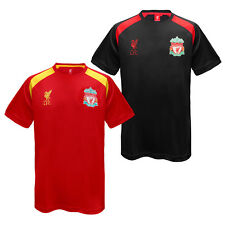 Liverpool Football Club Official Soccer Gift Mens Poly Training Kit T-Shirt