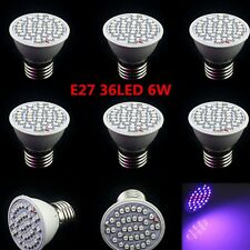HOT E27 3-80W Red Blue Plant Grow Light Bulb Garden Indoor Hydroponic Lamp