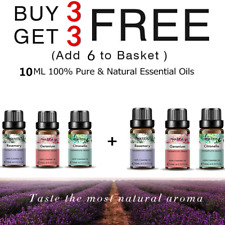 10ML Essential Oils Pure & Natural Aromatherapy Essential Oil Fragrance Aroma Z