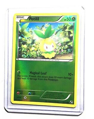 PETILIL - 9/114 - Black & White -  Reverse Holo - Pokemon Card - NM