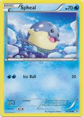 6x Spheal - 24/106 - Common NM Pokemon XY Flashfire