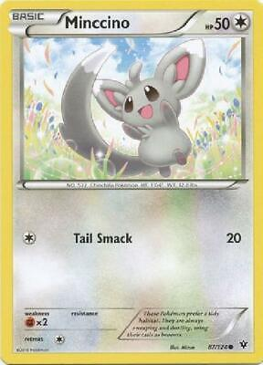 9x Minccino - 87/124 - Common NM Pokemon XY Fates Collide